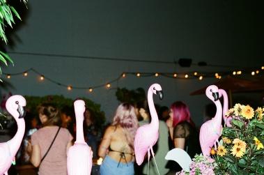 Photo // Whitney Love